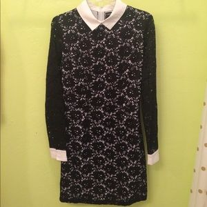 DYT Black Lace And Collar Dress